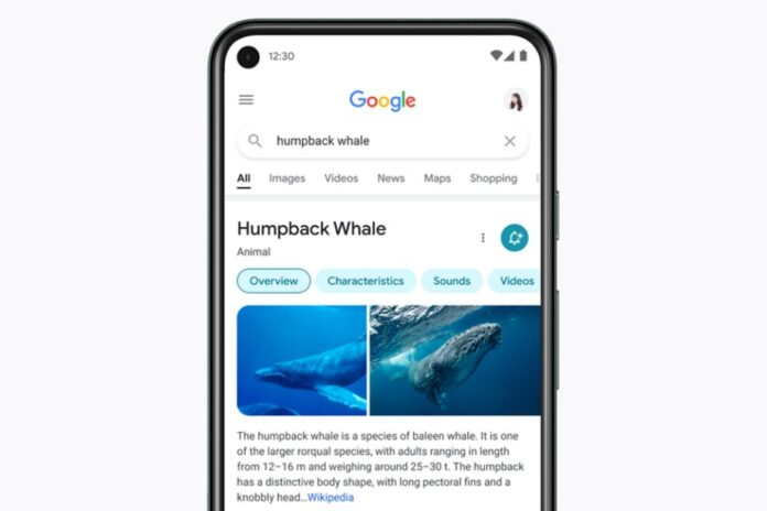 google-rolls-out-redesigned-mobile-search-pages