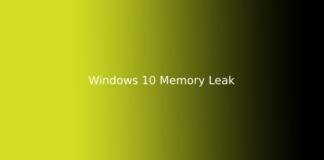 Windows 10 Memory Leak