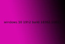 windows 10 19h2 build 18362.10013