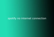 spotify no internet connection