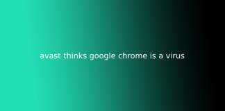 avast thinks google chrome is a virus
