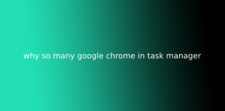 why so many google chrome in task manager