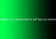raspberry pi connected to wifi but no internet