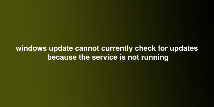windows update cannot currently check for updates because the service is not running