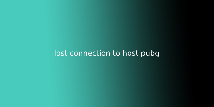 lost connection to host pubg