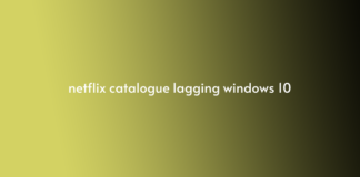 netflix catalogue lagging windows 10