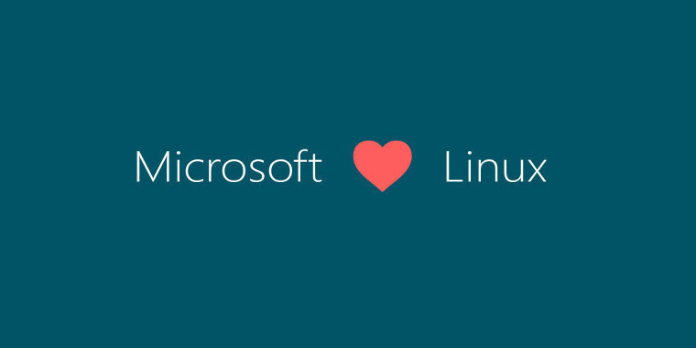 Microsoft suspends SQL Server on Windows Containers Beta, recommends Linux instead