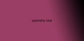 opendns test