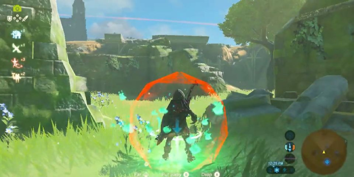 BOTW Player Glitches Into First-Person View Without Master Cycle