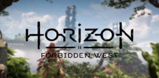 Horizon Forbidden West Dev Says It Will Be As Immersive On PS4 As PS5