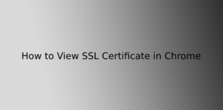 How to View SSL Certificate in Chrome